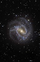 The Southern Pinwheel Galaxy Fine-Art Print