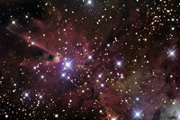 The Cone Nebula and Christmas Tree Cluster Fine-Art Print