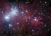 The Cone Nebula Region Fine-Art Print