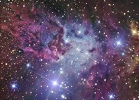 The Fox Fur Nebula Fine-Art Print