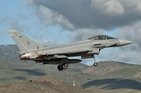 Eurofighter Typhoon of the Spanish Air Force Fine-Art Print
