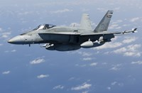 A CF-188A Hornet of the Royal Canadian Air Force (side view) Fine-Art Print