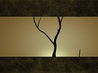 Tree at Sunset Fine-Art Print