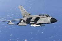 An Italian Air Force Tornado IDS armed with AGM-88 HARM missiles Fine-Art Print
