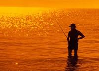 Fishing, Surfer's Paradise, Australia Fine-Art Print