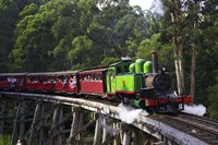 Puffing Billy Steam Train, Dandenong Ranges, near Melbourne, Victoria, Australia Fine-Art Print