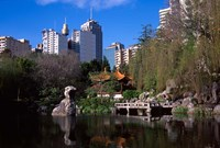 Chinese Garden, Darling Harbor, Sydney, Australia Fine-Art Print