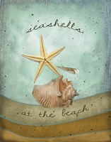 Seashells Fine-Art Print