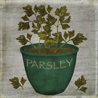 Herb Parsley Fine-Art Print