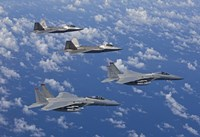 F-15 Eagles and F-22 Raptors Fly in Formation Fine-Art Print