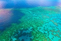 Aerial view of the Great Barrier Reef, Queensland, Australia Fine-Art Print