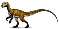 Scutellosaurus Fine-Art Print