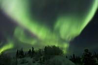 Aurora Borealis Takes Flight Fine-Art Print