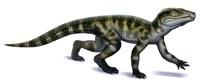 Protosuchus Fine-Art Print