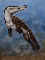 Ambulocetus Natans Fine-Art Print