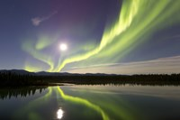 Aurora Borealis and Full Moon over the Yukon River, Canada Fine-Art Print
