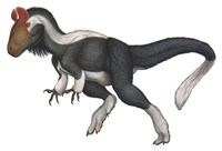 Cryolophosaurus Fine-Art Print