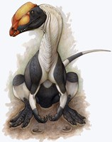 Dilophosaurus Fine-Art Print