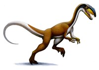 Megapnosaurus Fine-Art Print