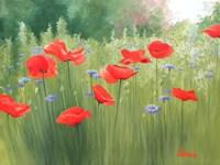 Backyard Poppies Fine-Art Print