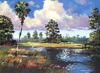 Sweetwater Glade Fine-Art Print