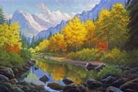 Mountain Stream Fine-Art Print