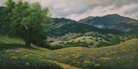 Spring in Carmel Valley Fine-Art Print