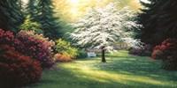 Spring Morning Fine-Art Print