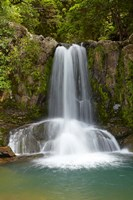 Waiau Waterfall near 309 Road, Coromandel Peninsula, North Island, New Zealand Fine-Art Print