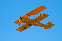 De Havilland DH 82A Tiger Moth Biplane, Warbirds over Wanaka, Airshow, New Zealand Fine-Art Print