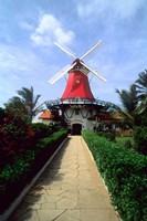 Windmill, Famous Old Mill Restaurant in Aruba Fine-Art Print
