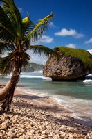 Bathsheba Rock, Barbados, West Indies Fine-Art Print
