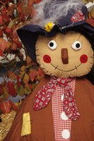 Stuffed Scarecrow on Display at Halloween, Washington Fine-Art Print