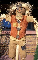 Scarecrow in Suburban Yard at Halloween, Logan, Utah Fine-Art Print