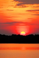 Amazon Jungle, Brazil, Sunset Fine-Art Print