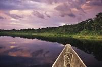 Paddling a dugout canoe, Amazon basin, Ecuador Fine-Art Print