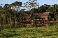 Scenes along the Amazon River in Peru Fine-Art Print