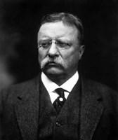 Portrait of Theodore Roosevelt Fine-Art Print