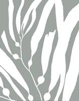 Seagrass I Fine-Art Print