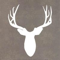 Buck II Fine-Art Print