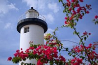 Puerto Rico, Viegues Island, lighthouse of Rincon Fine-Art Print