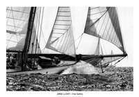 Free Sailing Fine-Art Print