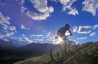 Mountain Biker at Sunset, Canmore, Alberta, Canada Fine-Art Print