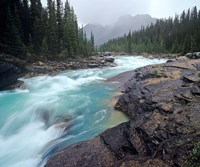 Mistaya River in Banff National Park in Alberta, Canada Fine-Art Print