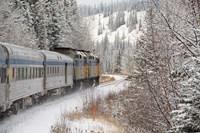 Via Rail Snow Train Between Edmonton & Jasper, Alberta, Canada Fine-Art Print