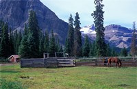 Log Cabin, Horse and Corral, Banff National Park, Alberta, Canada Fine-Art Print