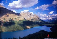 Hiker Overlooking Peyto Lake, Banff National Park, Alberta, Canada Fine-Art Print