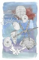 Sea Shell I Fine-Art Print