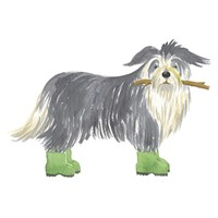 Shaggy Dog I Fine-Art Print