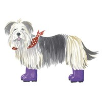 Shaggy Dog II Fine-Art Print
